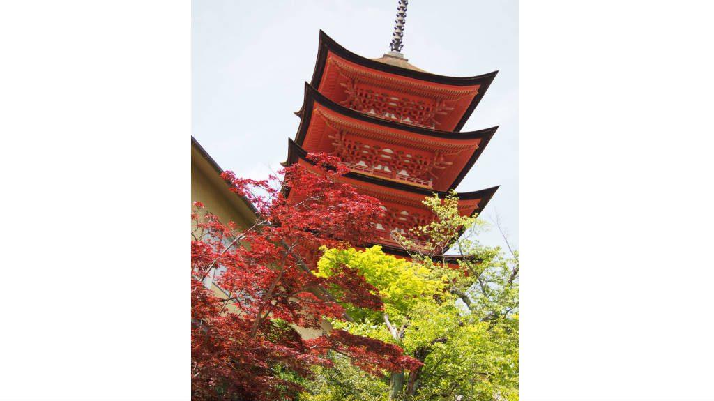 宮島の五重塔。重要文化財