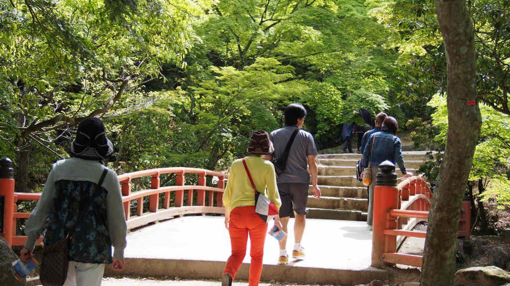 紅葉谷公園にはこういう橋がちょいちょいあります